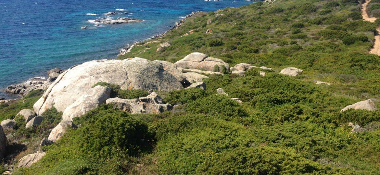 Vista Spettacolare Isola di Cavallo